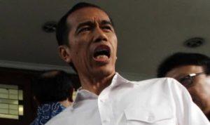 Presiden Jokowi - Foto iberita