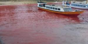 Laut berwarna merah di Maluku Tengah (IST)