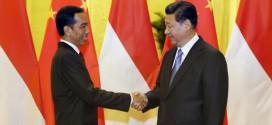 China Akuisisi Perusahaan Asing di Indonesia, Bagian Operasi Intelijen