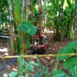 Tanah milik TNI AU yang dimasuki pekerja asal China (IST)