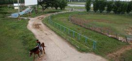 Pemerintah Kebut Proyek Pacuan Kuda Jelang Asian Games 2018