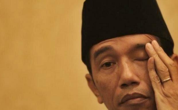 Presiden Jokowi (IST)