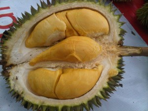 Durian Bawor - kiswantosp.wordpress.com