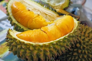 Durian Tembaga - metaloverose.blogspot.com