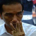 Presiden Jokowi (sayangi.com)