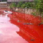Sungai berwarah merah di Kediri (IST)